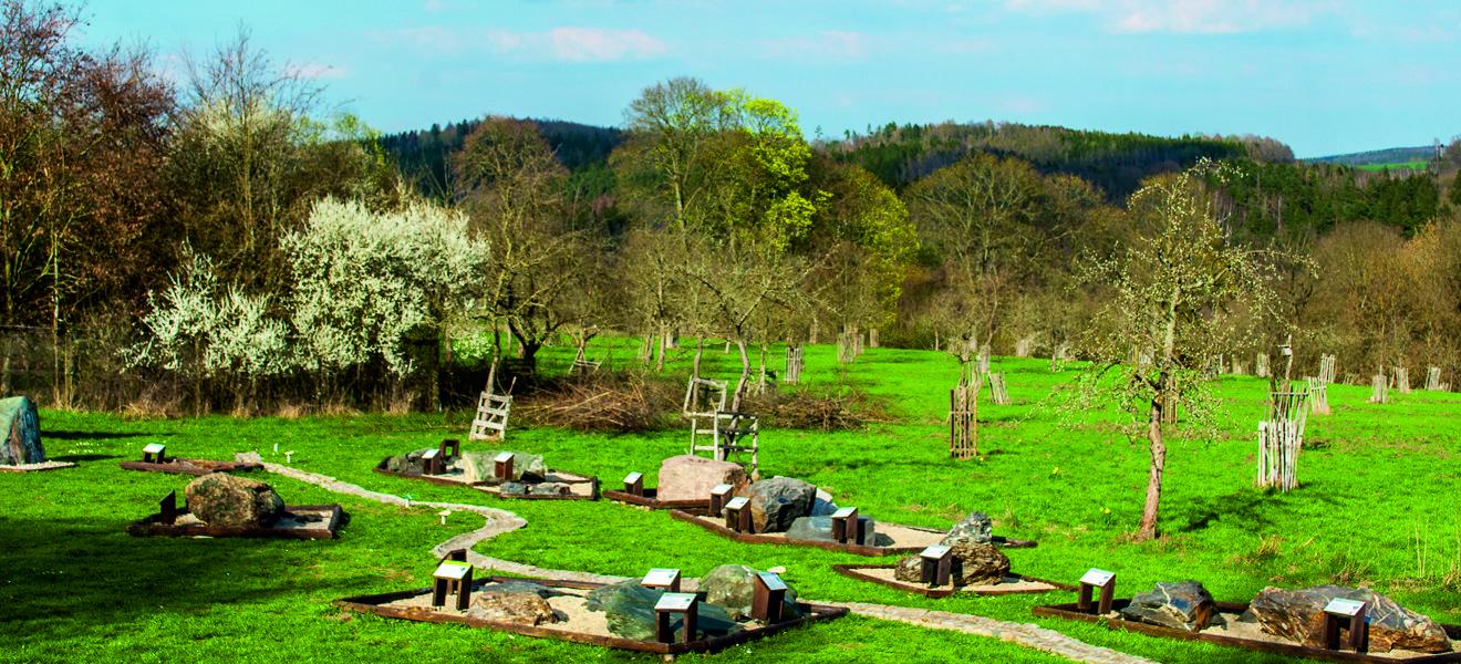 Gesteinsgarten, grünes Gras und Streuobstwiese
