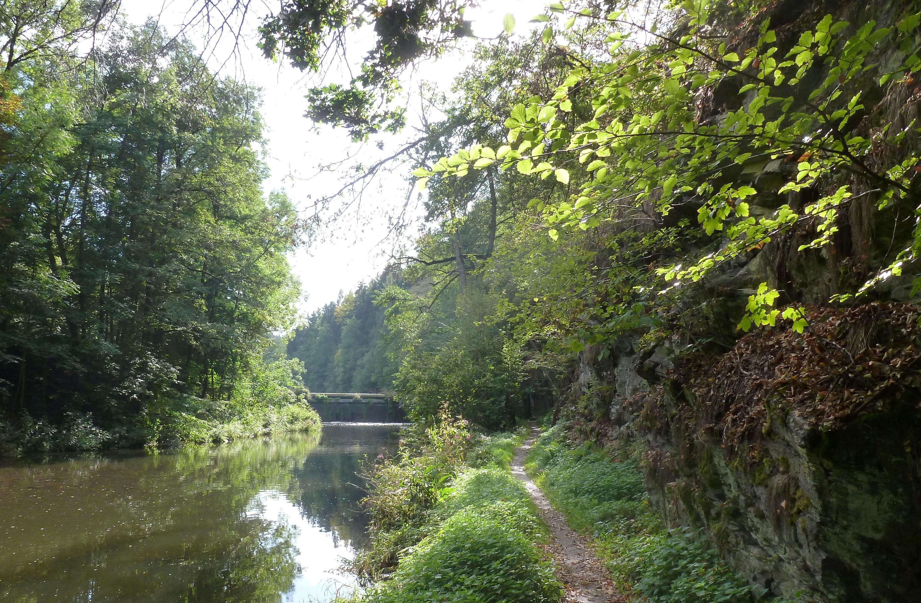 Flusslauf Weiße Elster